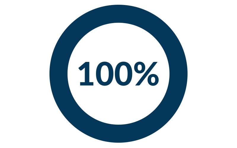 100-Prozent